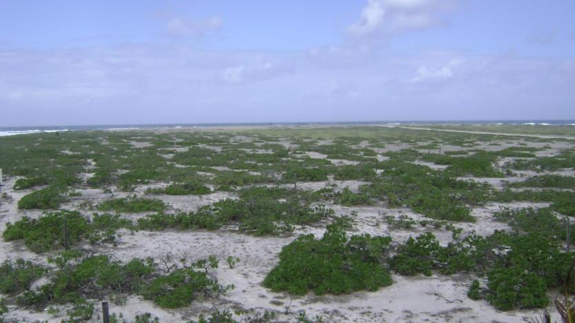 «Non au bradage de l'île de Tromelin»