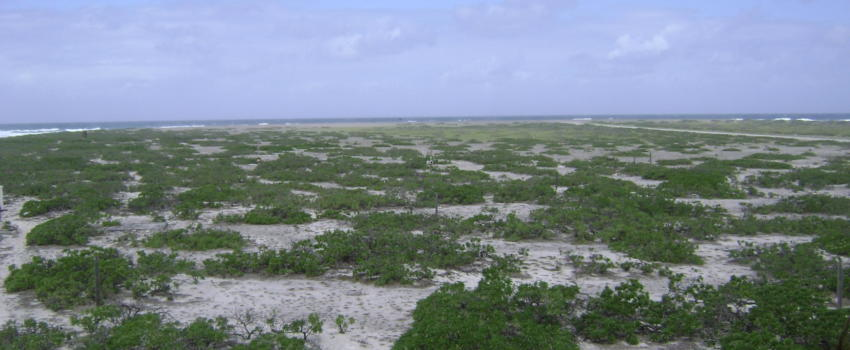 Île Tromelin: début de la fin de la puissancebleue?