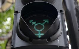 La justice refuse l'inscription «sexe neutre» sur un étatcivil