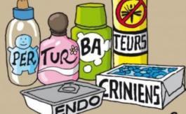 La France capitule sur les perturbateurs endocriniens