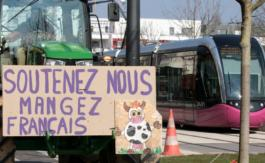 """Accord UE-Mercosur: """"On se retrouve avec une concurrence déloyale"""", dénonce un vice-président des Jeunes agriculteurs"""