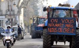 «On glorifie les paysans pendant le Salon de l'agriculture pour les oublier le reste de l'année»