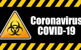 Merveilleux Coronavirus (suite)