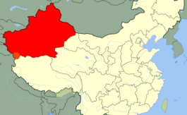 Que se passe-t-il au Xinjiang chinois ?