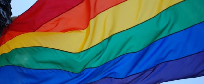 Marche des fiertés, lobby LGBT, désertion, Hongrie: quelle victime?