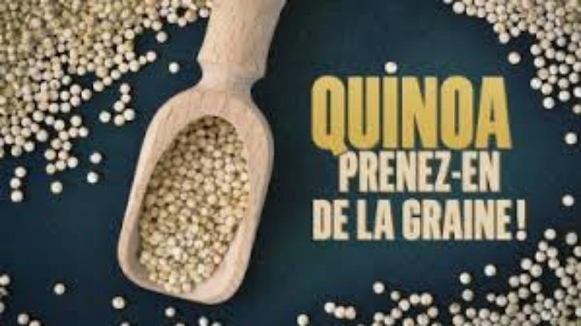 Art et Essai: Quinoa, prenez-en de la graine!