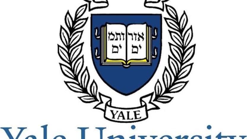 Yale: discrimination positive et (anti)racisme assumé