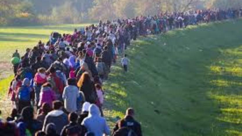 L'immigration massive: Un projet idéologique
